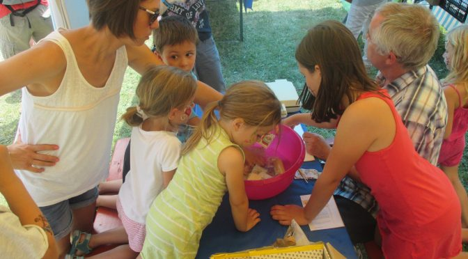 Markenspaß beim Musikfest – Jugend der Briefmarkenfreunde Kornwestheim wirbt für das Briefmarkensammeln